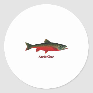 Arctic Char Illustration Classic Round Sticker