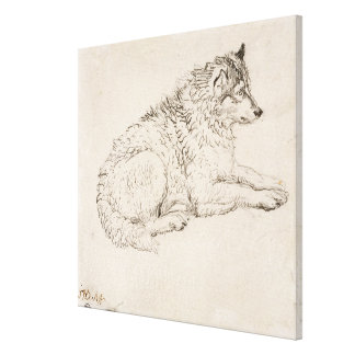 Arctic Dog, Facing Right (pencil on paper) Canvas Print