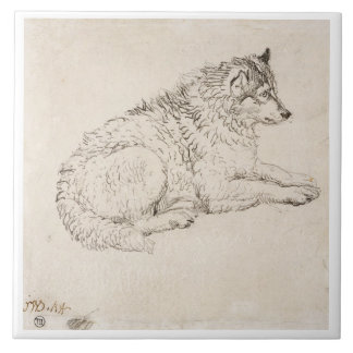 Arctic Dog, Facing Right (pencil on paper) Large Square Tile