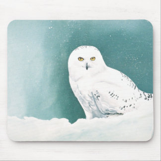 Arctic Eyes Mouse Pad
