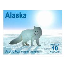 Arctic Fox - Alaska Postage Postcard