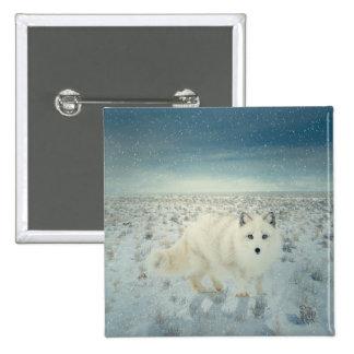 Arctic Fox Button