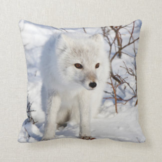 Arctic Fox , Churchill Wildlife Management Area Throw Pillow