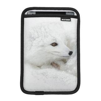 Arctic Fox curled up in winter iPad Mini Sleeve