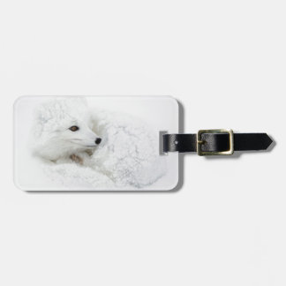 Arctic Fox curled up in winter Luggage Tag