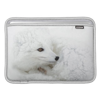 Arctic Fox curled up in winter MacBook Air Sleeve
