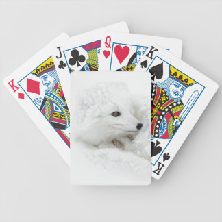 Arctic Fox curled up in winter Bicycle Playing Cards