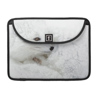 Arctic Fox curled up in winter Sleeve For MacBook Pro