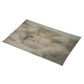 Arctic Fox Den Cloth Place Mat
