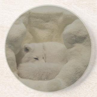 Arctic Fox Den Coasters