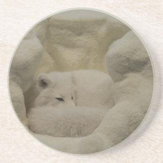 Arctic Fox Den Beverage Coasters