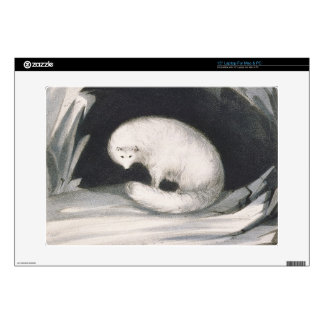 Arctic Fox, from 'Narrative of a Second Voyage in Decals For Laptops