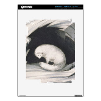 Arctic Fox, from 'Narrative of a Second Voyage in iPad 3 Skins