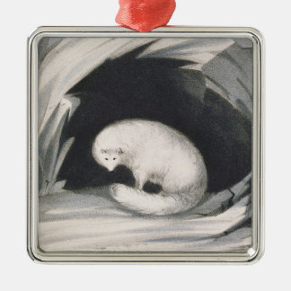 Arctic Fox, from 'Narrative of a Second Voyage in Metal Ornament