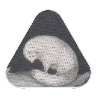 Arctic Fox, from 'Narrative of a Second Voyage in Speaker