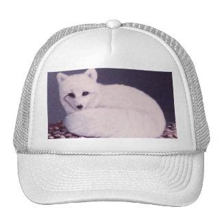 Arctic Fox Mesh Hat