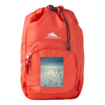 Arctic Fox High Sierra Backpack