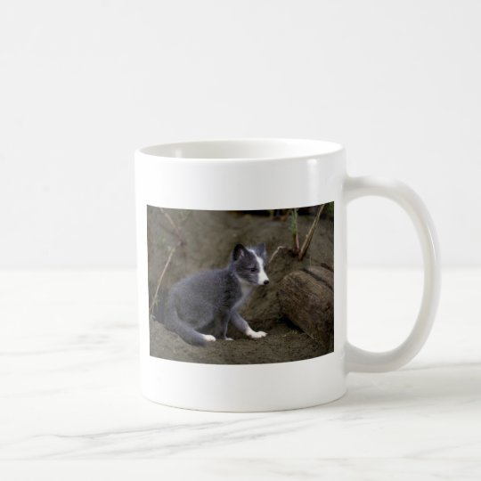 Arctic Fox kit Coffee Mug