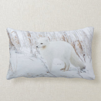 Arctic Fox Lumbar Pillow