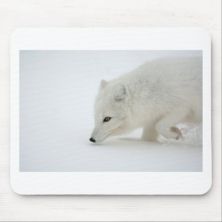 Arctic fox mouse pad