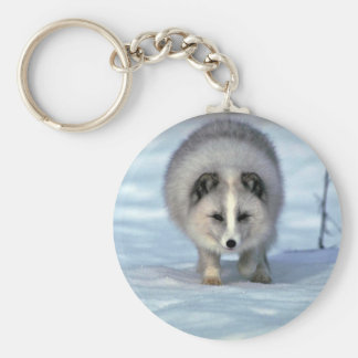 Arctic Fox on snow Keychain