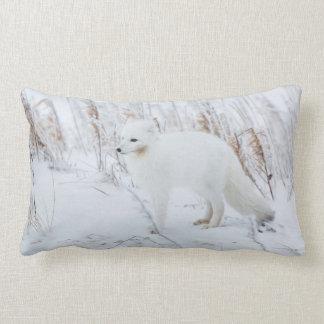 Arctic Fox Pillows