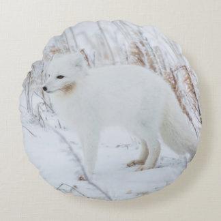 Arctic Fox Round Pillow