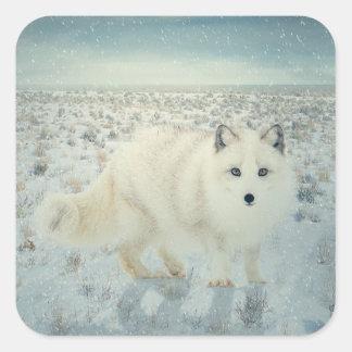 Arctic Fox Square Sticker