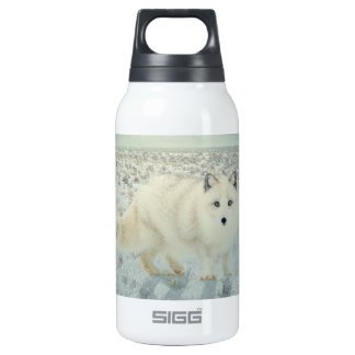 Arctic Fox Thermos Water Bottle