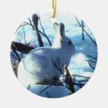 Arctic Hare in Snow Ceramic Ornament