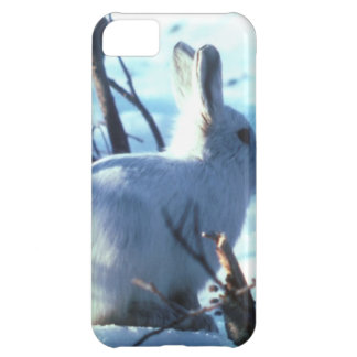Arctic Hare in Snow iPhone 5C Cover