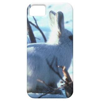Arctic Hare in Snow iPhone SE/5/5s Case
