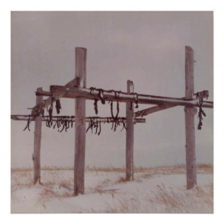 Arctic Meat Drying Rack, Old Pt. Lay Village Photo Poster