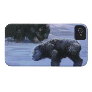 Arctic Musk Ox Mother & Calf Wildlife Art Case-Mate iPhone 4 Cases