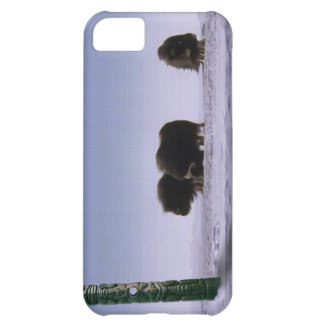 Arctic Musk Oxen & Totems Bovine Wildlife Art iPhone 5C Cover