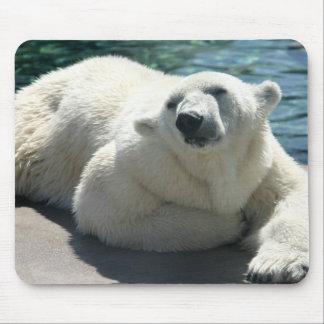 Arctic Polar Bear Mouse Pad