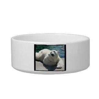 Arctic Polar Bear Pet Bowl Cat Bowls