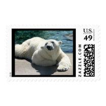 Arctic Polar Bear Postage Stamp
