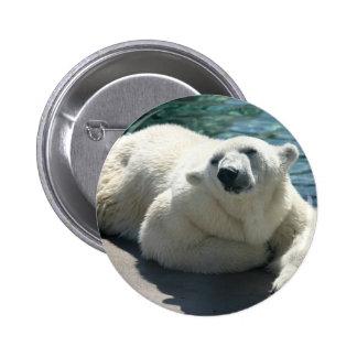 Arctic Polar Bear Round Button