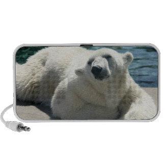 Arctic Polar Bear Speakers
