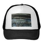 Arctic pond hats