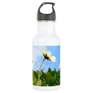 Arctic Poppies flowers Stainless Steel Water Bottle