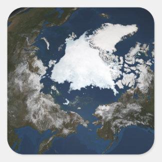Arctic sea ice square sticker