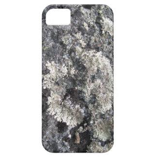 Arctic stones iPhone SE/5/5s case