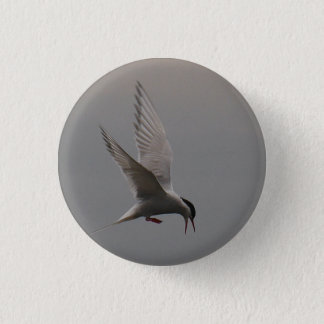 Arctic Tern Badge Button