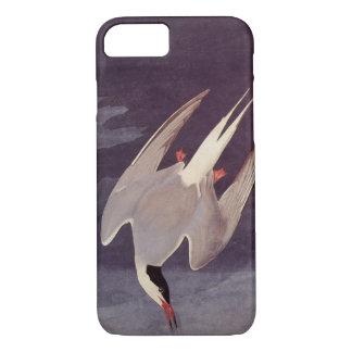 Arctic Tern by John James Audubon, Vintage Birds iPhone 7 Case