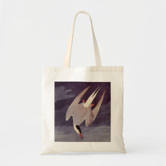 Arctic Tern by John James Audubon, Vintage Birds Tote Bag
