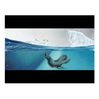 Arctic Viewpoint Postcard