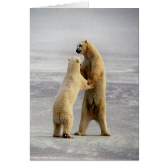 Arctic Waltz Card
