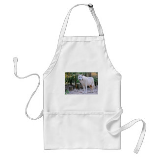 Arctic Wolf in the forest Adult Apron